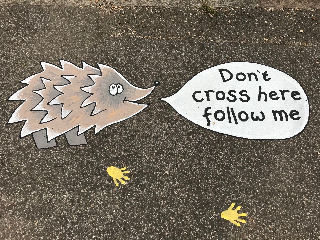 The pavement street art - a hedgehog with a speech bubble saying follow me