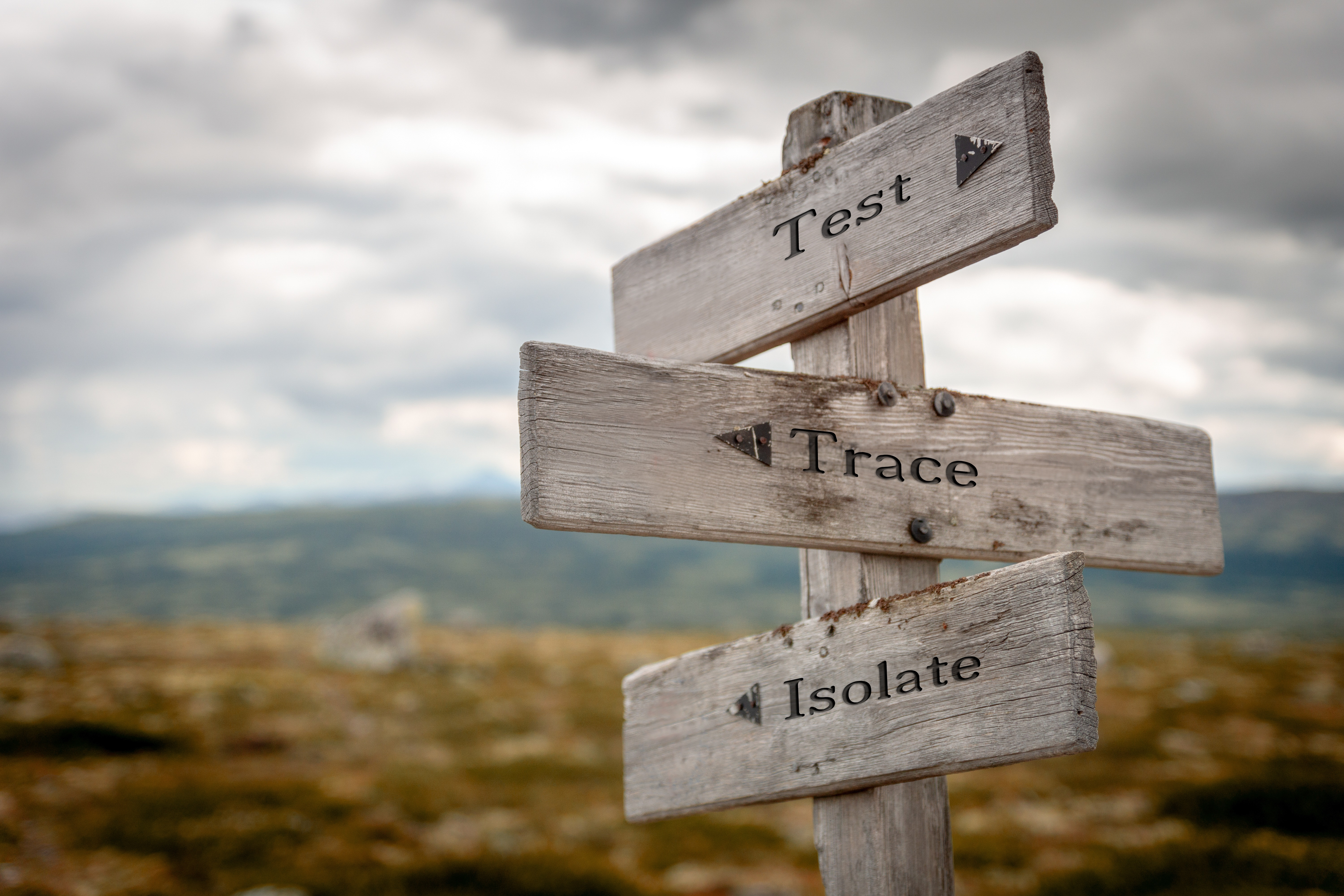 Signpost with signs saying 'Test', 'Trace' and 'Isolate' pointing in different directions